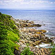 Atlantic Coast In Newfoundland Print by Elena Elisseeva