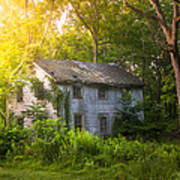 A Fading Memory One Summer Morning - Abandoned House In The Woods Print by Gary Heller