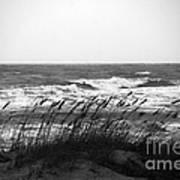 A Gray November Day At The Beach Print by Susanne Van Hulst
