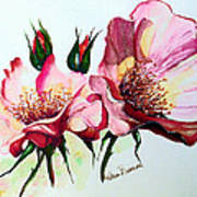 A Rose Is A Rose Print by Karin  Dawn Kelshall- Best