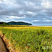 A View From Discovery Trail Print by Robert Bales