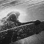 A Woman On A Surfboard Under The Water Print by Ben Welsh