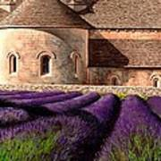 Abbey Lavender Print by Michael Swanson