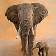 African Elephants Print by David Stribbling