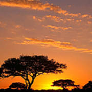 African Sunset Print by Sebastian Musial