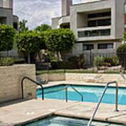 Afternoon Swim Palm Springs Print by William Dey