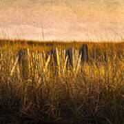 Along The Fence Print by Bill  Wakeley