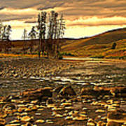 Along The Larmar River Print by Marty Koch