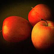 Ambrosia Apples Print by Theresa Tahara