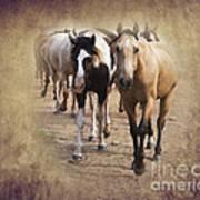 American Quarter Horse Herd Print by Betty LaRue