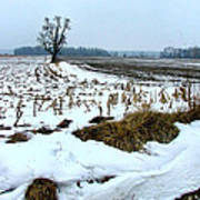 Amish Field In Winter Print by Julie Dant