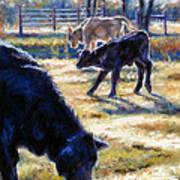 Angus Calves Out With Dad Print by Denise Horne-Kaplan