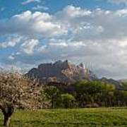 April Showers And New Green Of Spring Rockville Utah Print by Robert Ford