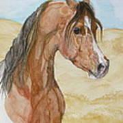 Asileh Print by Janina  Suuronen