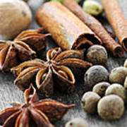 Assorted Spices Print by Elena Elisseeva