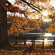 Autumn Beauty Print by Debra and Dave Vanderlaan