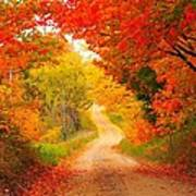 Autumn Cameo Road Print by Terri Gostola