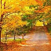 Autumn Road Home Print by Terri Gostola