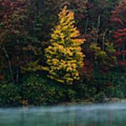 Autumn Splendor Print by Shane Holsclaw