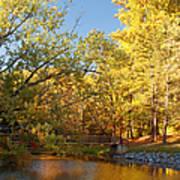 Autumn's Golden Pond Print by Kim Hojnacki
