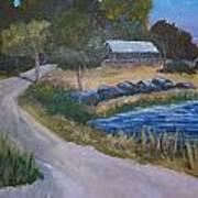 Babcock Ranch Webb Lake Print by Kathy Przepadlo
