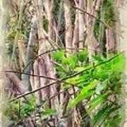 Bamboo Forest At Lamma Island Hong Kong Print by Yury Malkov