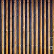 Bamboo Mat Texture Print by Tim Hester