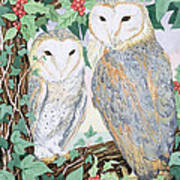 Barn Owls Print by Suzanne Bailey