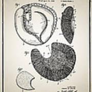 Baseball Glove Patent Print by Digital Reproductions