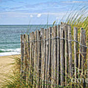 Beach Fence Print by Elena Elisseeva