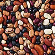 Beans Print by Elena Elisseeva