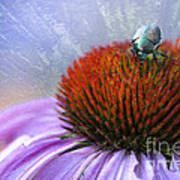 Beetlemania Print by Juli Scalzi