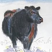 Black Cow Drawing Print by Mike Jory
