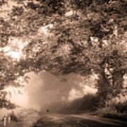 Black Dog On A Misty Road. Misty Roads Of Scotland Print by Jenny Rainbow