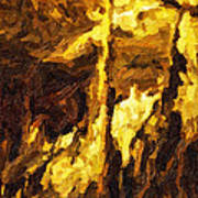 Blanchard Springs Caverns-arkansas Series 07 Print by David Allen Pierson