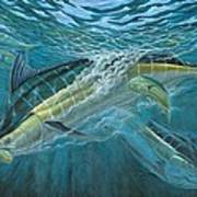 Blue And Mahi Mahi Underwater Print by Terry Fox