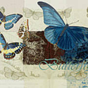 Blue Butterfly - J152164152-01 Print by Variance Collections