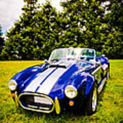 Blue Cobra Print by Phil 'motography' Clark