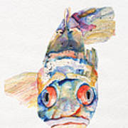 Blue Fish   Print by Pat Saunders-White