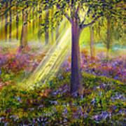 Bluebell Woods Print by Ann Marie Bone