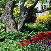 Botanical Landscape 2 Print by Eunice Miller