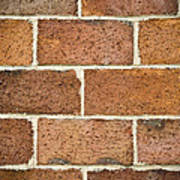 Brick Wall Print by Frank Tschakert