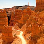 Bryce Canyon Trail Print by Jane Rix