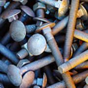 Bunch Of Screws Print by Carlos Caetano