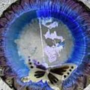 Butterfly Print by Dietrich ralph  Katz