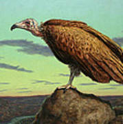 Buzzard Rock Print by James W Johnson