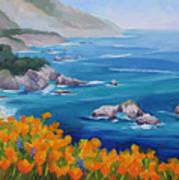 California Poppies Big Sur Print by Karin  Leonard