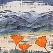 California Poppies Print by Carolyn Doe