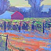 California Vineyard Print by Kip Decker