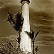 Cape Florida Lighthouse Print by Skip Willits